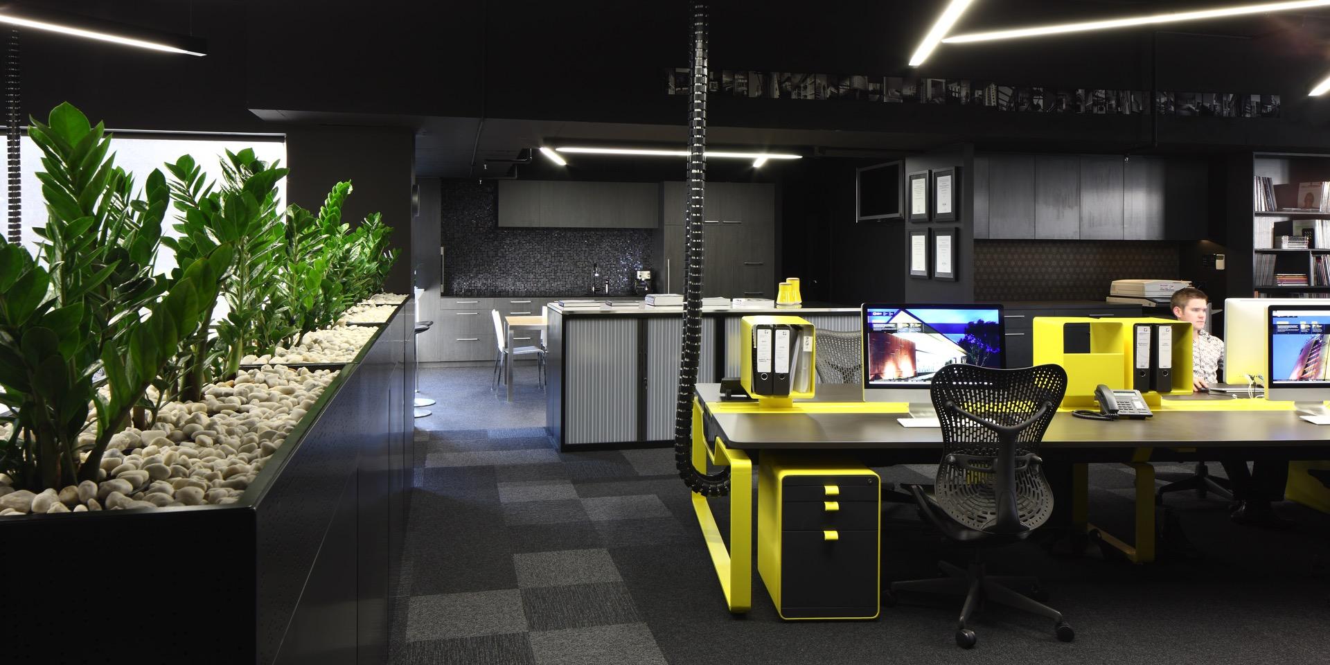 Interior Plantscaping Brisbane - Trans-Plant Hire