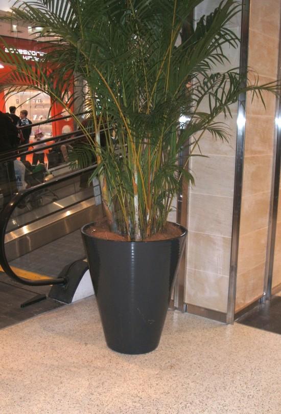 Fibresmart Cone Planter