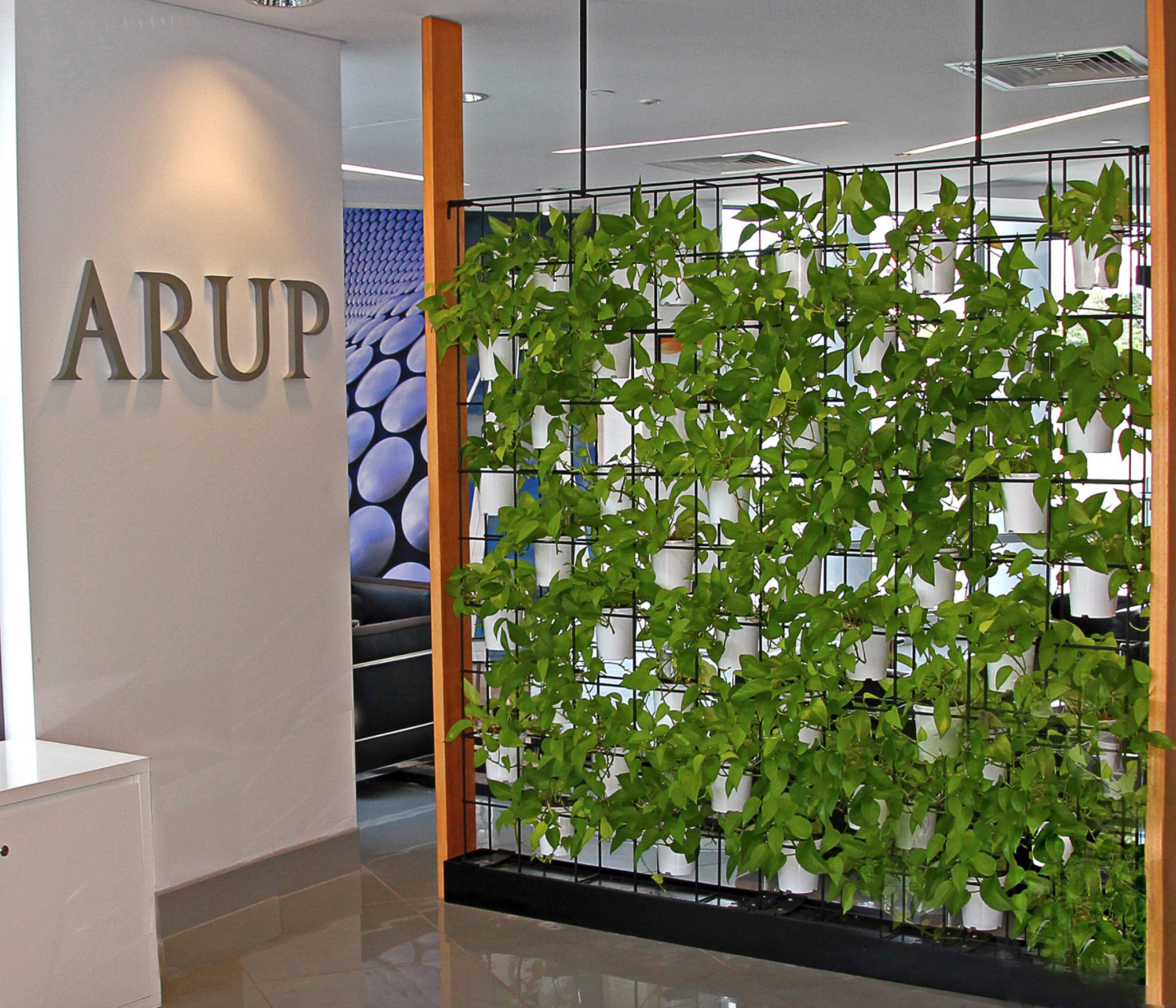 Green Wall For Your Office Why Vertical Wall Gardens Are