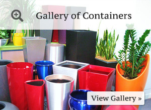 btn-container-gallery